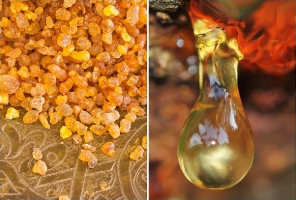 14 Genius Uses for Frankincense Essential Oil.