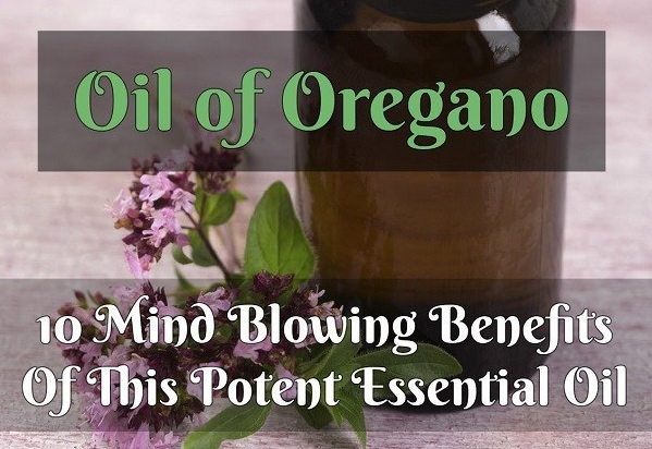 Oil of Oregano. Check more on Natural Living Ideas