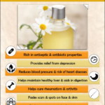 6 Tips Why Chamomile Essential Oil is Essential For Survival