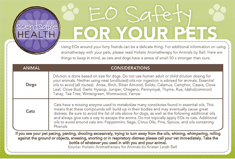 Essential Oils & Safety for pets by http://scentsablehealth.com/